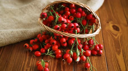 rosehip : ripe red dogrose in a basket on a wooden