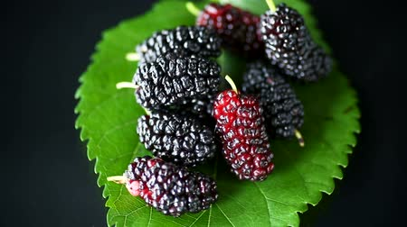 juicy : Mulberry berry with leaf isolated on black background Stock Footage