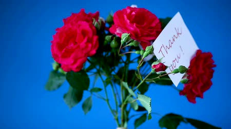 agradecimento : bouquet of beautiful red roses on a blue
