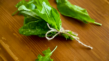 шпинат : bunch of organic fresh green sorrel, on a table. Стоковые видеозаписи