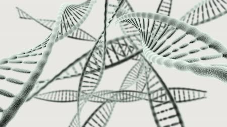 plemniki : Journey through many DNA chains on a light background HD video