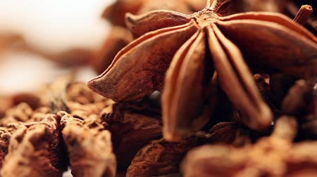 fırınlama : Pile of star anise fruits and seeds,rotating Stok Video