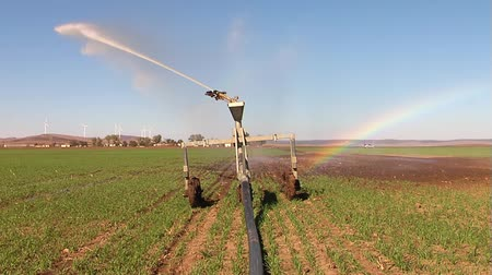 cultivar : Pivot irrigation in progress on a wheat farm.