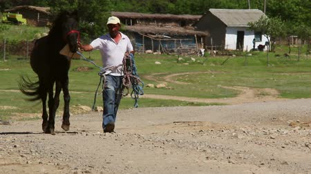 európa : Dobrogea Romania  10 May 2015: Man leading his horse down a country road