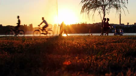 сумерки : Silhouettes of people during sunset in the park