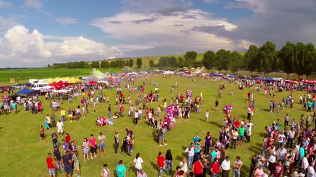 festivais : Luncavita, Romania - 05 July 2015: Linden tree festival, aerial perspective. A festival with music, fun and a lot of nature. Vídeos