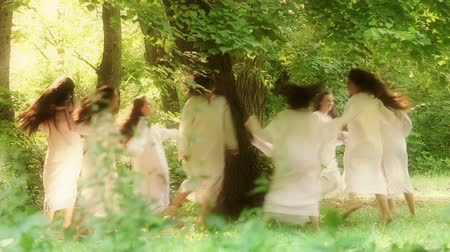 faerie : Luncavita, Romania - 24 June 2012: People in the village celebrate the Snziene gentle fairies holiday annually. The most beautiful maidens in the village dress in white and spend all day playing in the forest and picking flowers.