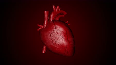 lekarstwa : 3D animation of a beating human heart
