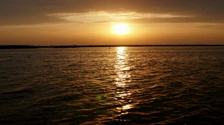 biodiverzitás : A beautiful sunrise on a lake in Danube Delta Stock mozgókép