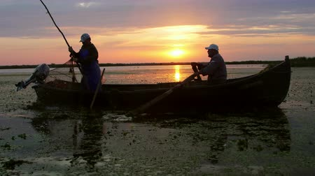 cattail : Danube Delta, Romania - June 16, 2019: Fishermen checking nets at dawn in Danube Delta Stock Footage