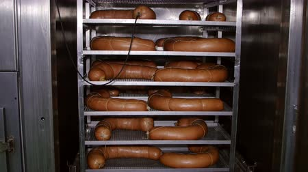 вкусности : Appetizing smoked sausages on racks in a meat processing factory Стоковые видеозаписи