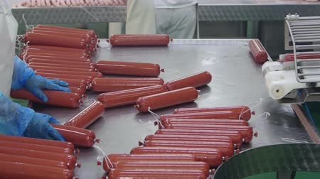 guloseimas : Production of sausages (salami) in a meat processing factory Vídeos