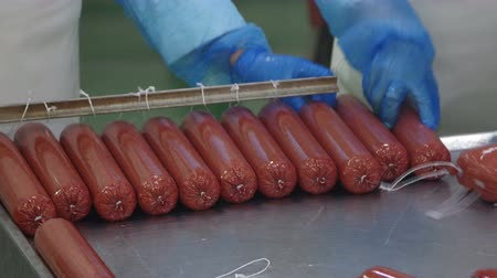 вкусности : Production of sausages (salami) in a meat processing factory Стоковые видеозаписи