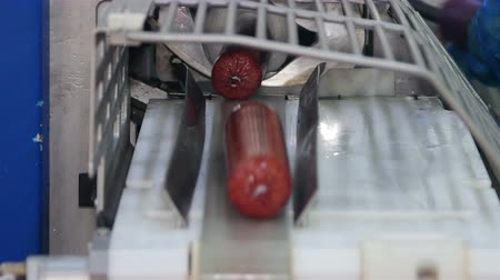 baharatlı alman sosisi : Production of sausages (salami) in a meat processing factory Stok Video