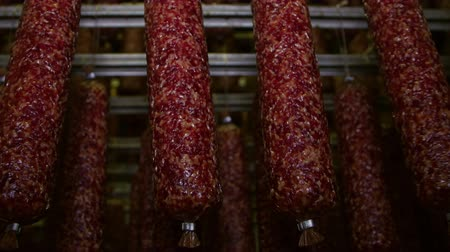 вкусности : Appetizing smoked sausages (salami) in a meat processing factory Стоковые видеозаписи