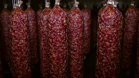 finomságok : Appetizing smoked sausages (salami) in a meat processing factory Stock mozgókép