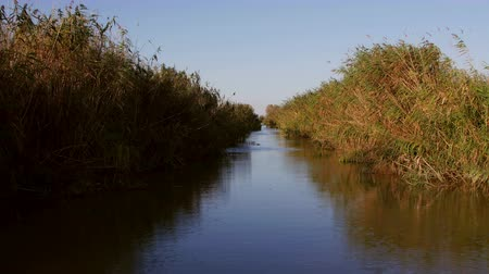 catástrofe : Danube Delta wetlands in motion