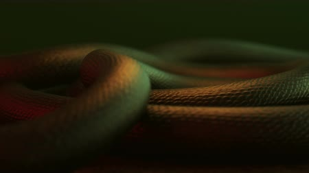 доисторический : 3D animation of a giant dragon snake body moving