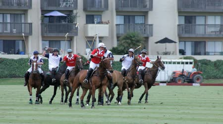 match : Polo Players Go for the Ball in a Match.