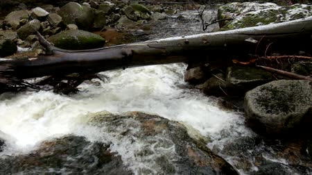 kamienie : Mountain river full of crystal cold water. Stream with bended Between the big boulders. Slipper stones and foamy chilly water around. Noise of huge of water. Wideo