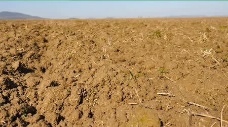 глыба : Camera moving over plowed wheat field. Spring field, moist brown soil full of humus, old rotten stalks of plants