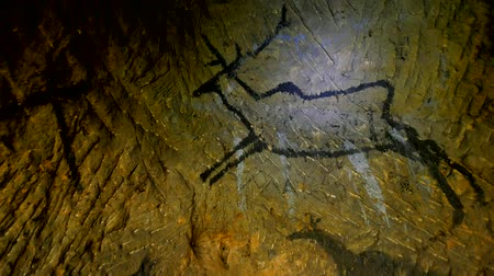доисторический : Discovery of prehistoric caveman hunt of paint in sandstone cave. Paint of human hunting of Deers, mammoth and reindeer. Spotlight shines on historical carbon black abstract art in sandstone cave Стоковые видеозаписи