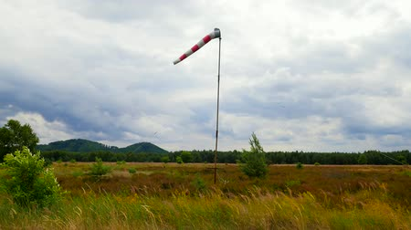 indicar : Windsock blowing in the wind with overcast sky, lonely tree and green lawn. Abandoned windsock in wind
