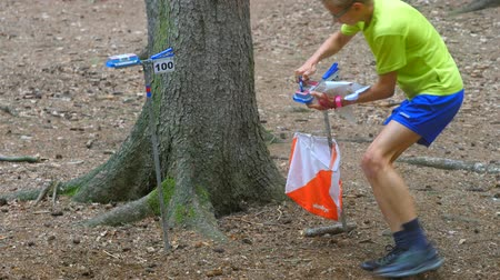 クルーザー : Checkpoint check. Sports person of orienteering or rogaining run. Runner wear sportswear and run or walk through forest. Orienteering race, 17th of August 2019. Mladejov, Czech Rep