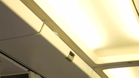 steward : Steward or stewardess closing overhead cabin on airplane