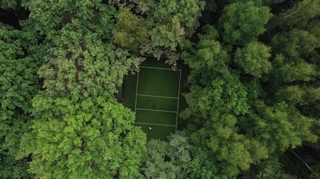 korona : Players play frisbee on a court in the middle of green park. Aerial top view Stock mozgókép