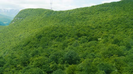 кабель : Moving on aerial lift above foliage of green forest on slope of Caucasus mountain