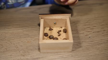 Baby carefully collects coffee beans and puts them into wooden box. Close up shot