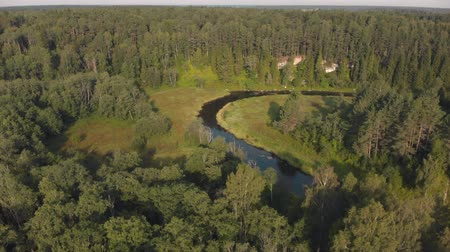 Winding river flows through summer forest. Green trees on banks. Aerial shot