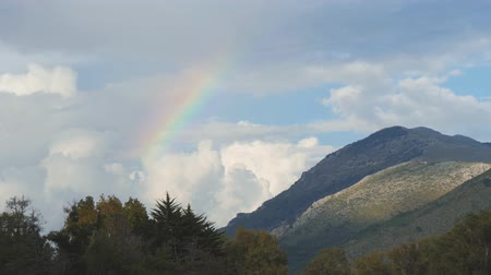 Colorful rainbow over forest and mountain. Cumulus clouds in the sky