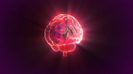 brain : red brain rotate flare Stock Footage