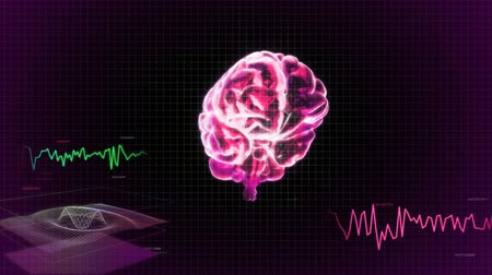 psikoloji : red 3d brain wave scanning screen
