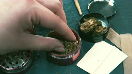 Marijuana weed in female hand. Grinder and marijuana buds on the background