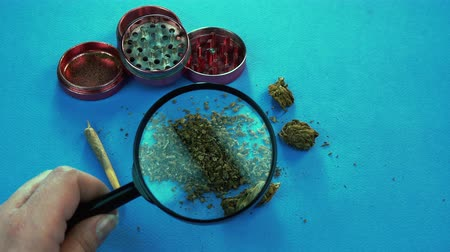 The marijuana buds with magnifying glass. Grinder and marijuana joint are on the background. Vídeos