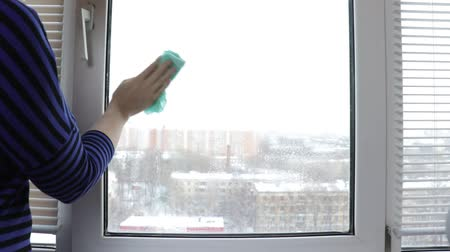 housekeeper : Cleaning a window with a wash spray and a duster bya young woman