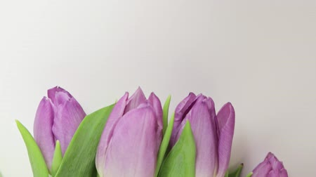 weeding : Bouquet of spring flowers, pink tulips on white background close up - 8 march, Valentine day or mothers day holiday concept