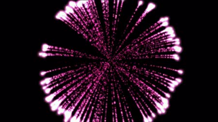 shiny : purple circle fireworks at night,holiday and Wedding