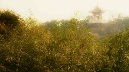 panorâmico : wind shaking bamboo,Pavilion on hill in distance,Hazy Style. Stock Footage