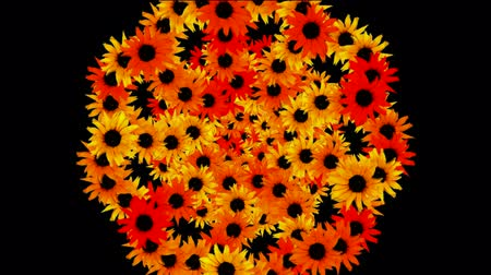 százszorszép : sunflower wreath as wedding background,disco neon flower pattern.