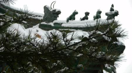winter place : Temple tiles and sculpture on the roof,Ancient architecture,pine.
