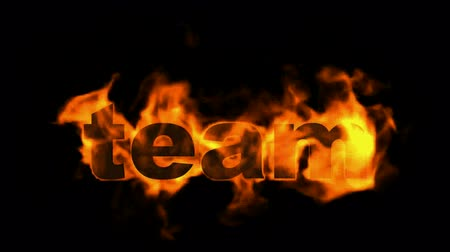 career success : team,fire business key words.