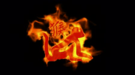японский рисунок : chinese zodiac of fire monkey and handwriting chinese kanji,china tradition festival. Стоковые видеозаписи