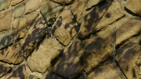 pettyes : swing leaves silhouette shadow on stone wall.
