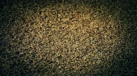 areias : sand,wind blow sand particles on beach.