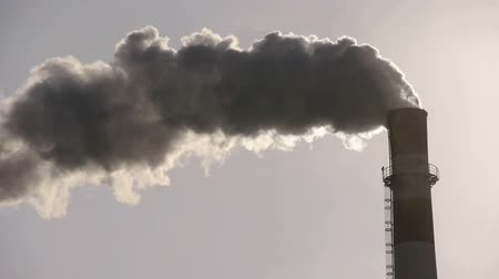 rafineria : fumes billow from industry chimney,energy generation pipe with smoke.