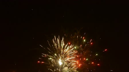 finale : Fireworks at night. Stock Footage